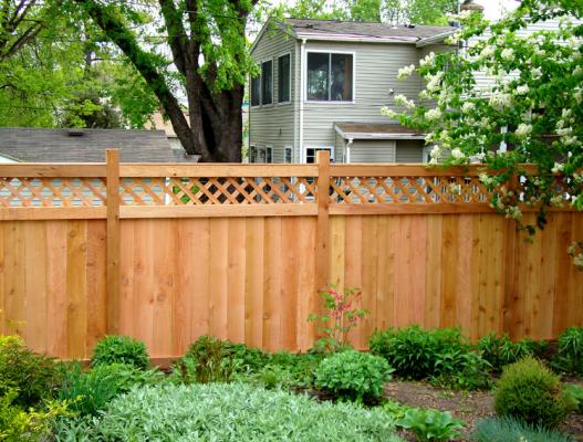 Mẫu hàng rào đẹp