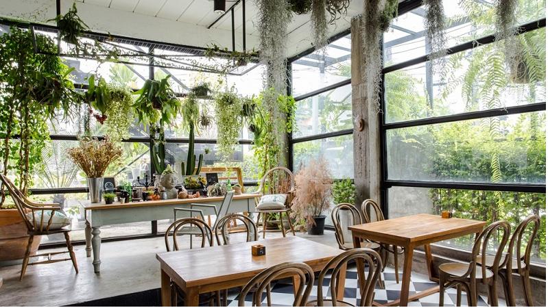 thiết kế quán cafe không gian xanh